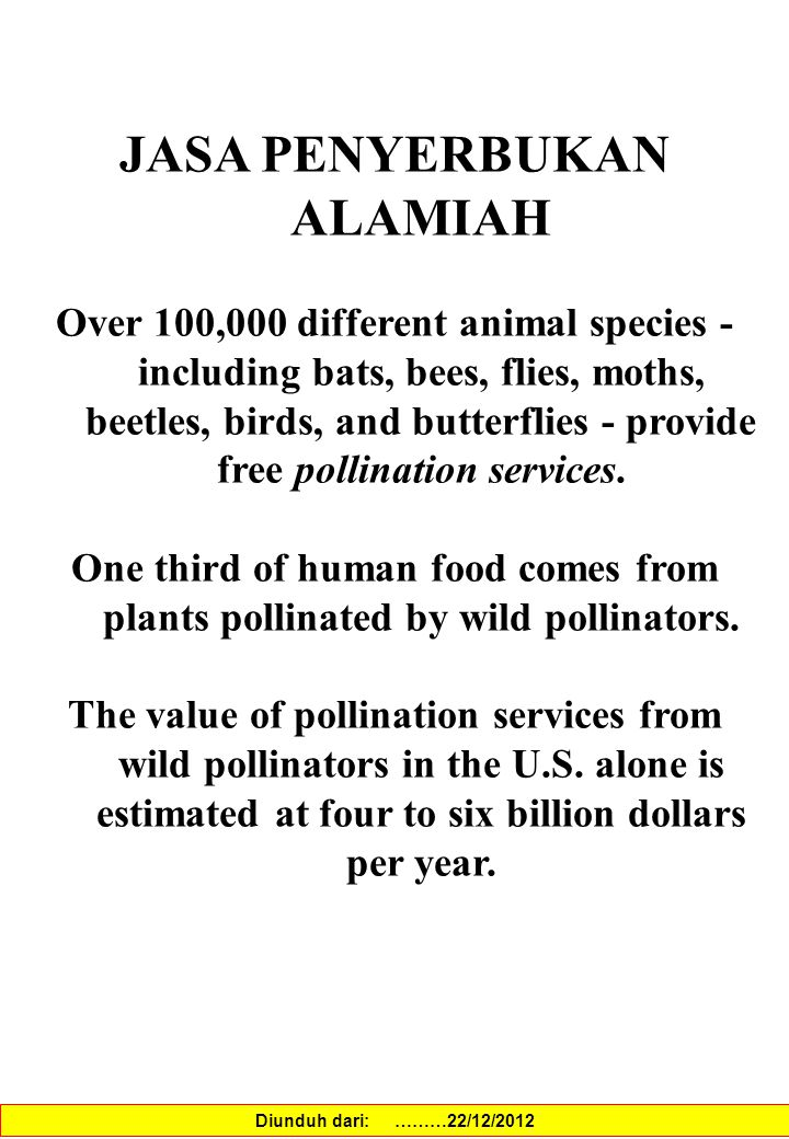 JASA PENYERBUKAN ALAMIAH Over 100,000 different animal species - including bats, bees, flies, moths, beetles, birds, and butterflies - provide free po