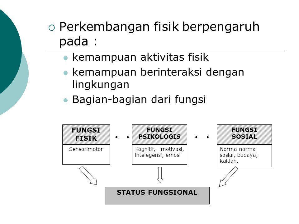  Perkembangan fisik berpengaruh pada : kemampuan aktivitas fisik kemampuan berinteraksi dengan lingkungan Bagian-bagian dari fungsi FUNGSI FISIK FUNG