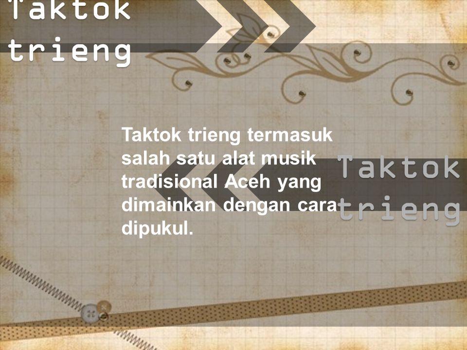 Taktok trieng Taktok trieng termasuk salah satu alat musik tradisional Aceh yang dimainkan dengan cara dipukul.