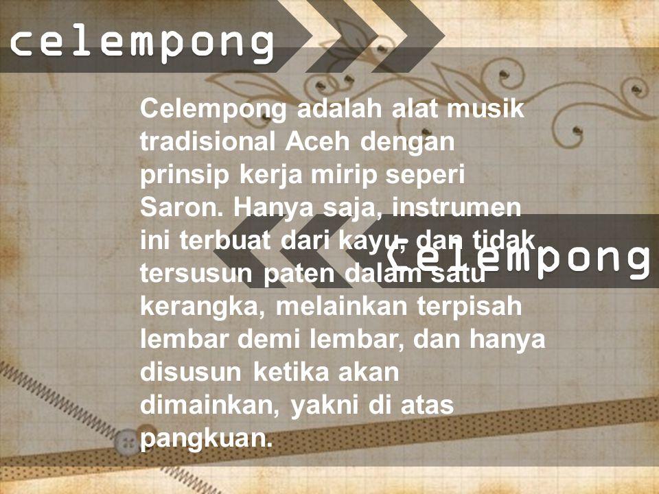 Celempong Celempong adalah alat musik tradisional Aceh dengan prinsip kerja mirip seperi Saron.