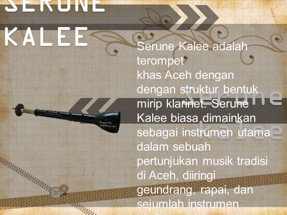 Bangsi Alas Bangsi adalah alat musik tradisional aceh yang terbuat dari bahan bambu yang merupakan alat musik tiup.
