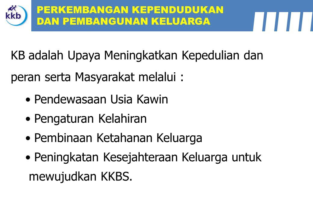 KKP BKR: 73.341 S/D DESEMBER : 78.210 >100 % : 10 KAB > 87,5 – 100 : 4 KAB SANGAT BAIK BAIK % ANGG BKR AKTIF DESEMBER 2011 % KLG REMAJA Angg BKR Aktif di prov Lampung: Rangking 14 dari 33 Provinsi