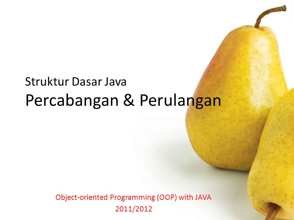 Struktur Dasar Java Percabangan & Perulangan Object-oriented Programming (OOP) with JAVA 2011/2012