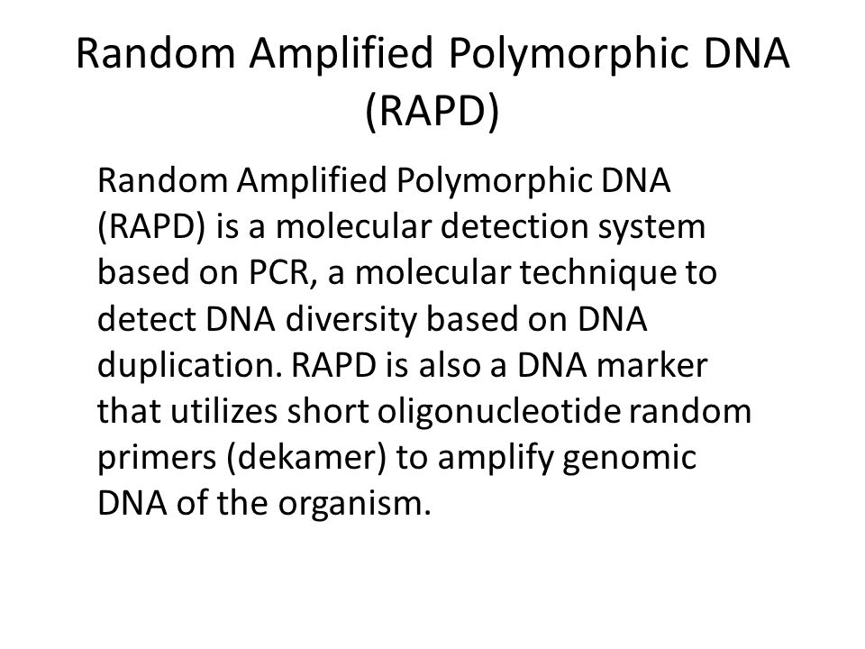 Why RAPD??? The RAPD marker is an efficient tool which permits to obtain information on genetic similarity among mango plants and produces specific DN