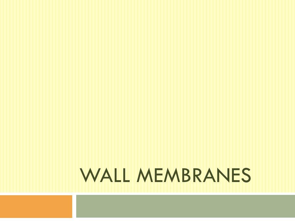WALL MEMBRANES
