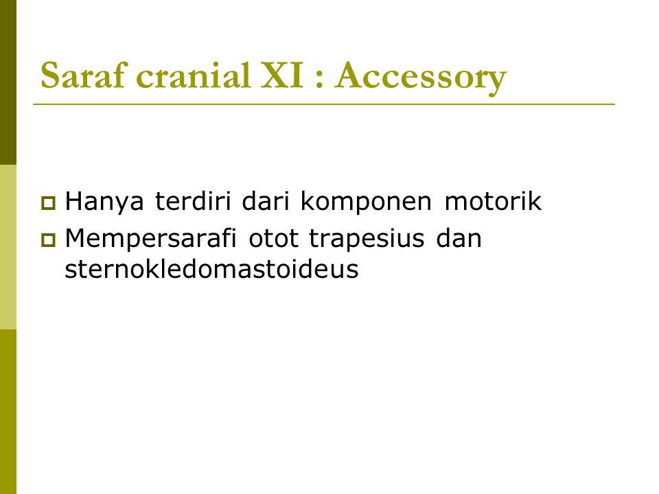 Saraf cranial XI : Accessory  Hanya terdiri dari komponen motorik  Mempersarafi otot trapesius dan sternokledomastoideus