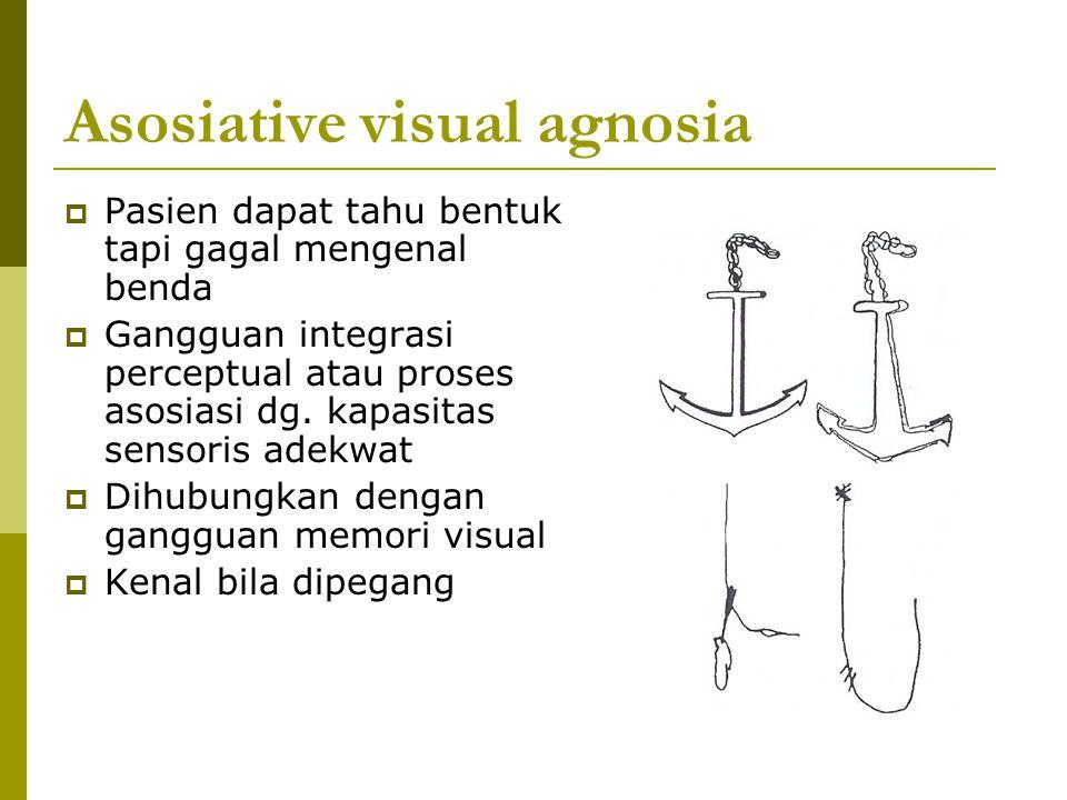 Asosiative visual agnosia  Pasien dapat tahu bentuk tapi gagal mengenal benda  Gangguan integrasi perceptual atau proses asosiasi dg. kapasitas sens