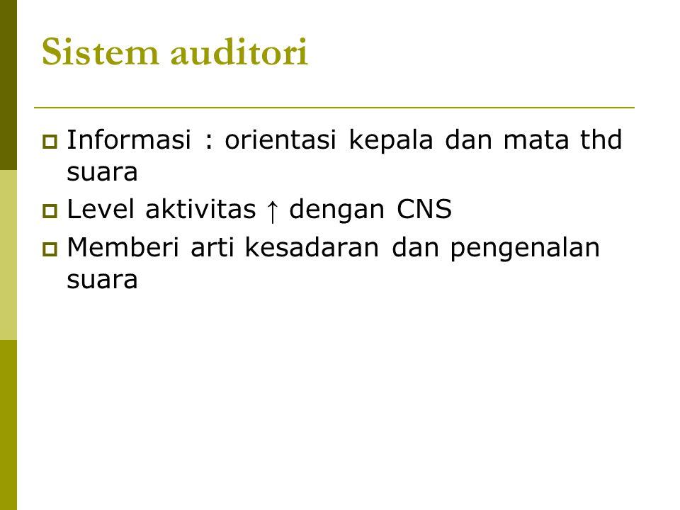 Sistem auditori  Informasi : orientasi kepala dan mata thd suara  Level aktivitas ↑ dengan CNS  Memberi arti kesadaran dan pengenalan suara
