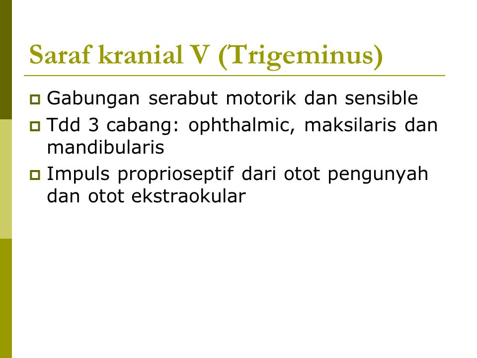 Saraf kranial V (Trigeminus)  Gabungan serabut motorik dan sensible  Tdd 3 cabang: ophthalmic, maksilaris dan mandibularis  Impuls proprioseptif da