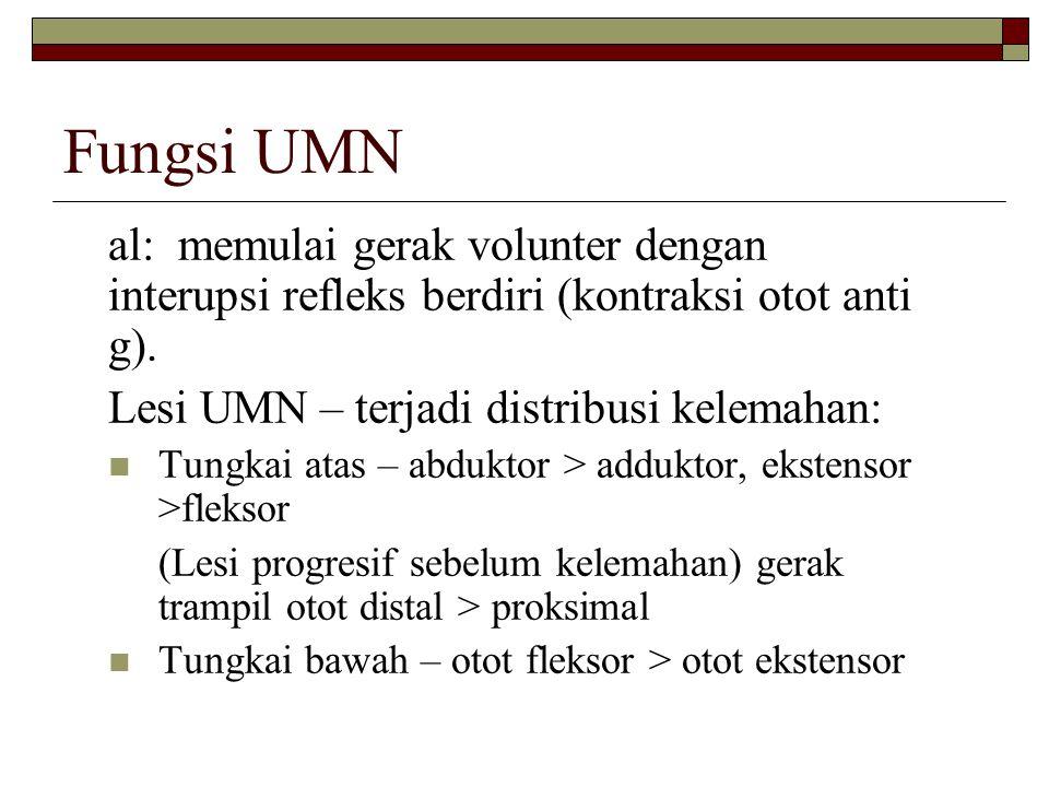 Fungsi UMN al: memulai gerak volunter dengan interupsi refleks berdiri (kontraksi otot anti g). Lesi UMN – terjadi distribusi kelemahan: Tungkai atas