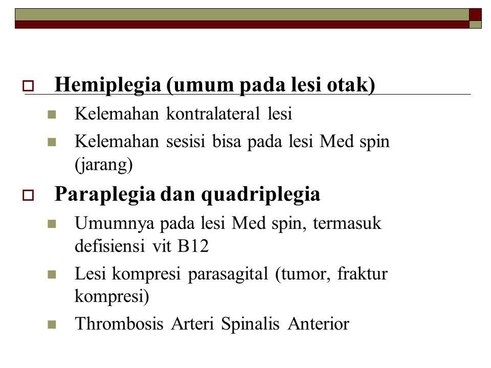  Hemiplegia (umum pada lesi otak) Kelemahan kontralateral lesi Kelemahan sesisi bisa pada lesi Med spin (jarang)  Paraplegia dan quadriplegia Umumny