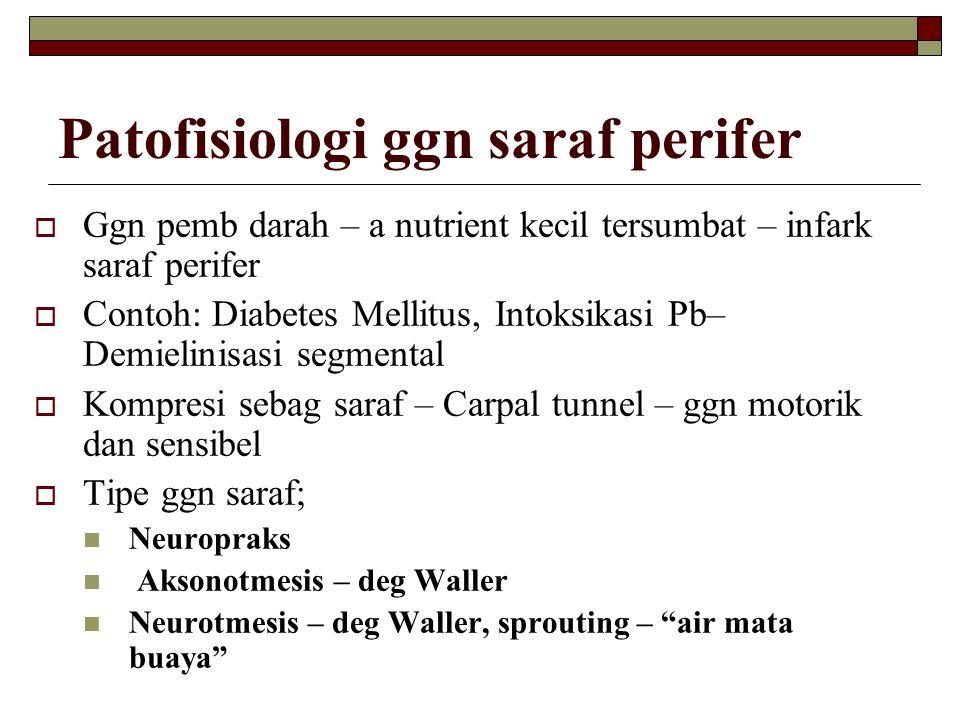 Patofisiologi ggn saraf perifer  Ggn pemb darah – a nutrient kecil tersumbat – infark saraf perifer  Contoh: Diabetes Mellitus, Intoksikasi Pb– Demi