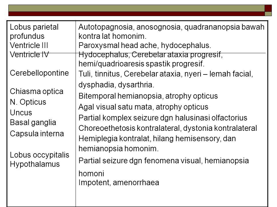 Lobus parietal profundus Ventricle III Ventricle IV Cerebellopontine Chiasma optica N. Opticus Uncus Basal ganglia Capsula interna Lobus occypitalis H