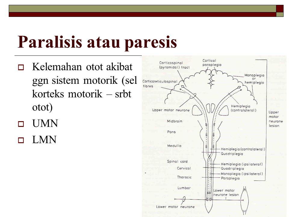 Paralisis atau paresis  Kelemahan otot akibat ggn sistem motorik (sel korteks motorik – srbt otot)  UMN  LMN