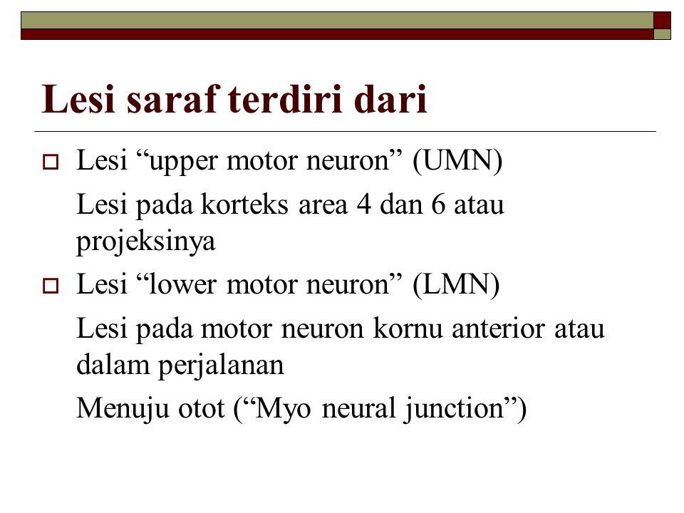 """Lesi saraf terdiri dari  Lesi """"upper motor neuron"""" (UMN) Lesi pada korteks area 4 dan 6 atau projeksinya  Lesi """"lower motor neuron"""" (LMN) Lesi pada"""