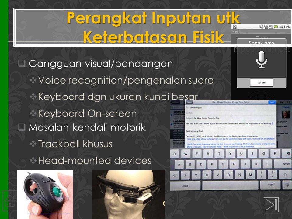  Gangguan visual/pandangan  Voice recognition/pengenalan suara  Keyboard dgn ukuran kunci besar  Keyboard On-screen  Masalah kendali motorik  Trackball khusus  Head-mounted devices Perangkat Inputan utk Keterbatasan Fisik 18