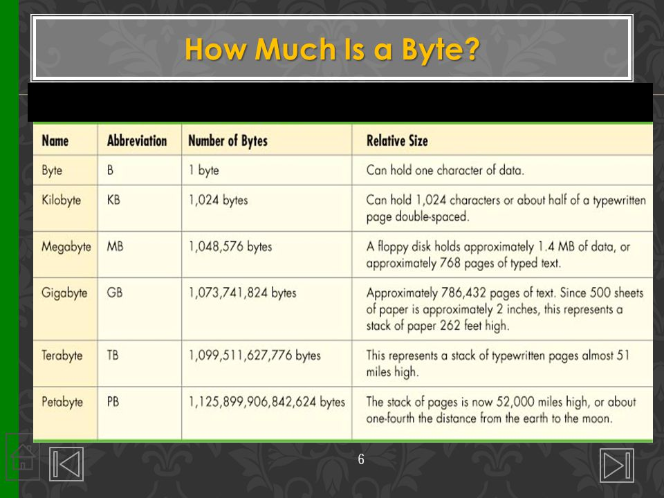 How Much Is a Byte? 6