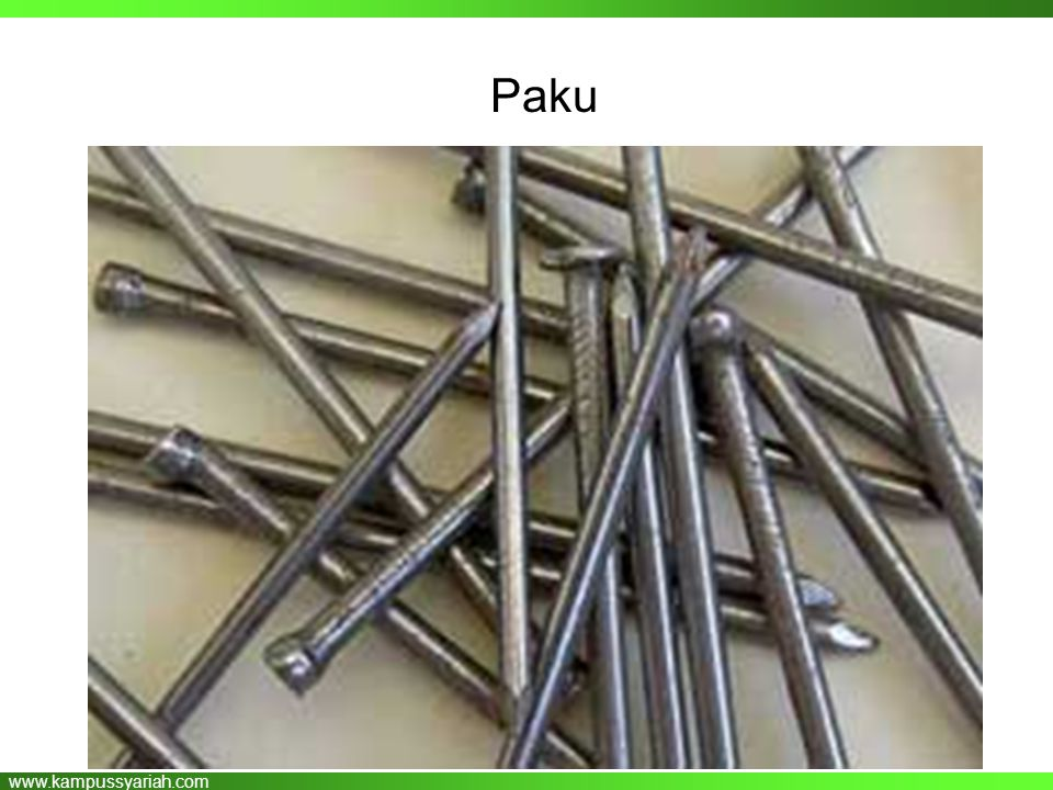 www.kampussyariah.com Paku