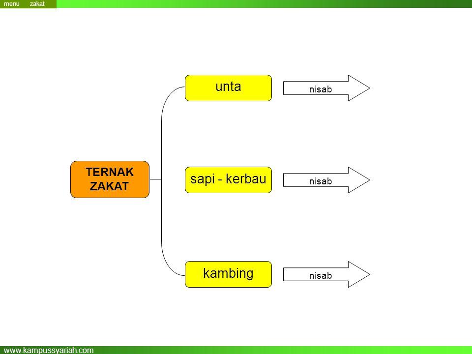 www.kampussyariah.com unta sapi - kerbau kambing TERNAK ZAKAT nisab menu zakat