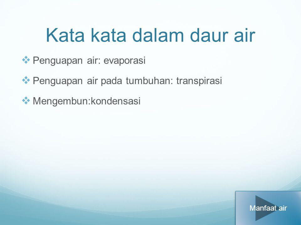 Kata kata dalam daur air PP enguapan air: evaporasi PP enguapan air pada tumbuhan: transpirasi MM engembun:kondensasi Manfaat air