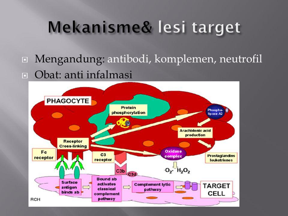  Hipersensitivitas imun komplek  Reaksinya umum/sistemik  Lupus (kulit, ginjal)  Arthus  Persendian (RA)  Poliarteritis (pembuluh darah)  Reaksi 3-10 jam setelah pemaparan antigen  Eksogenous (bakteri, virus, parasit)  Endogen (nonspesifik, autoimunitas)