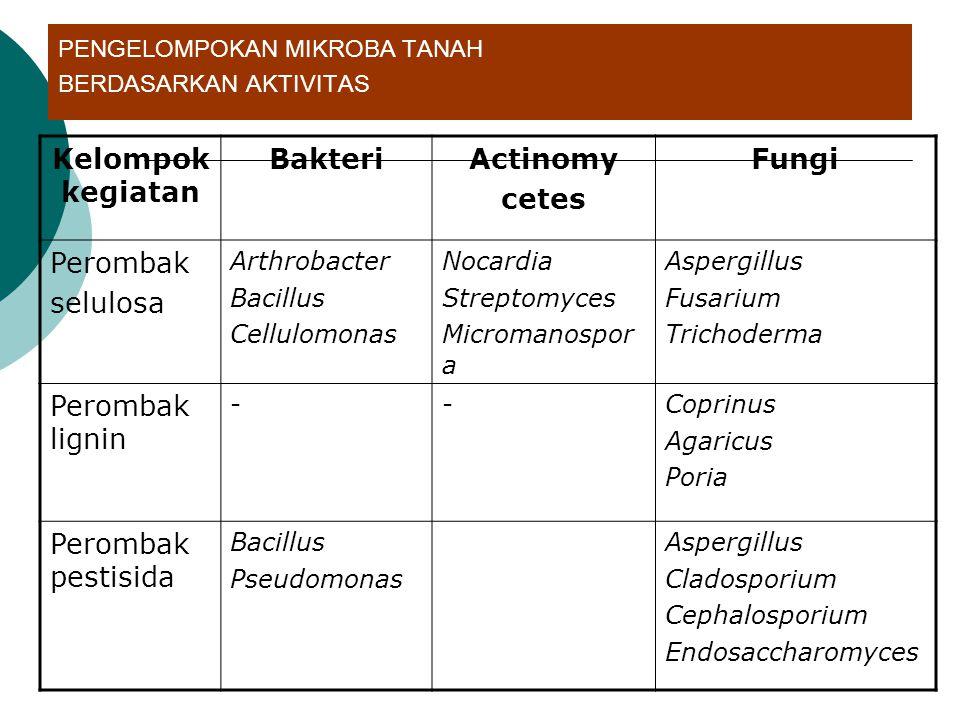 PENGELOMPOKAN MIKROBA TANAH BERDASARKAN AKTIVITAS Kelompok kegiatan BakteriActinomy cetes Fungi Perombak selulosa Arthrobacter Bacillus Cellulomonas N