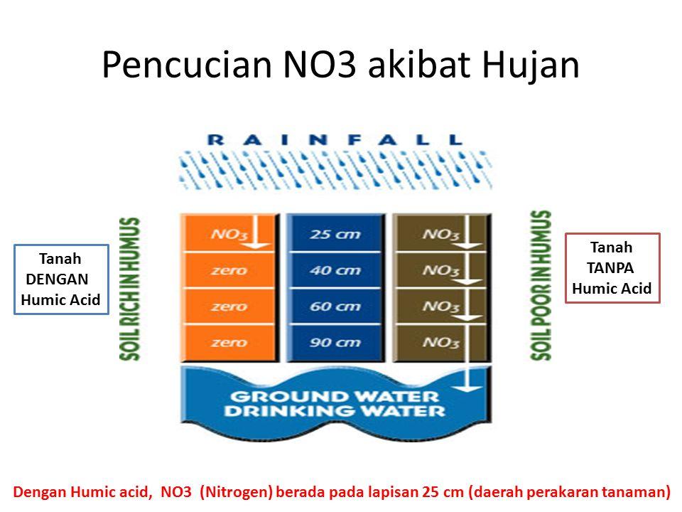 Pencucian NO3 akibat Hujan Tanah DENGAN Humic Acid Tanah TANPA Humic Acid Dengan Humic acid, NO3 (Nitrogen) berada pada lapisan 25 cm (daerah perakara