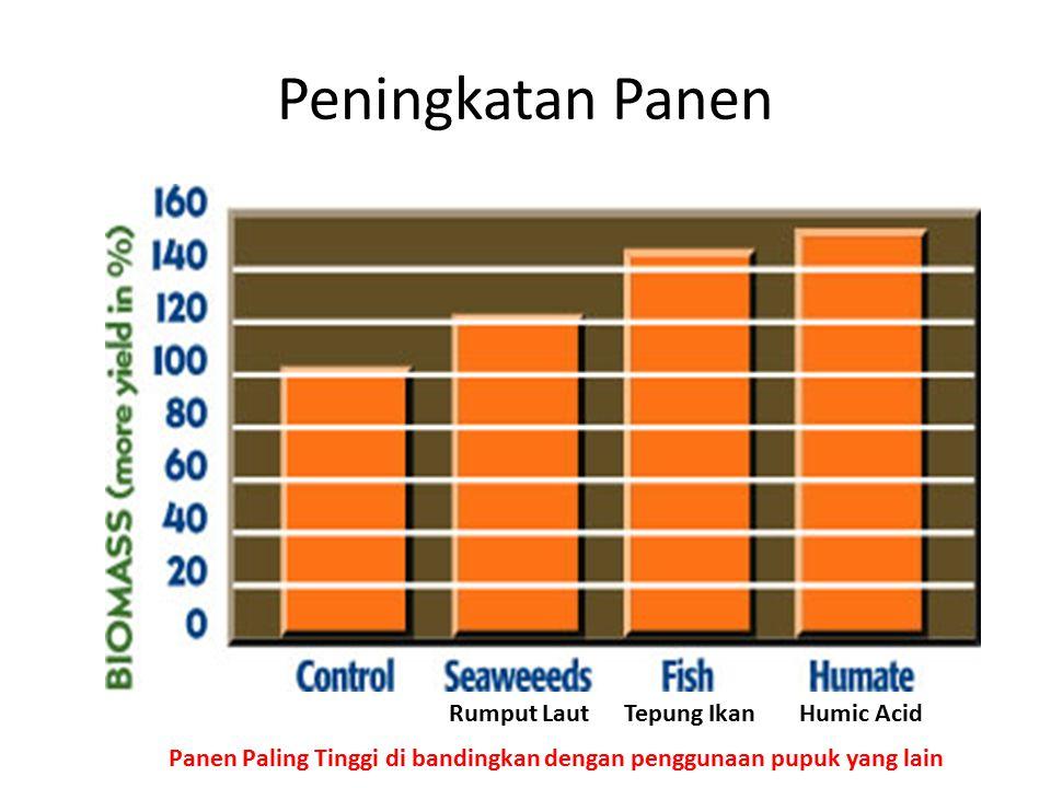 Peningkatan Panen Panen Paling Tinggi di bandingkan dengan penggunaan pupuk yang lain Rumput LautTepung IkanHumic Acid