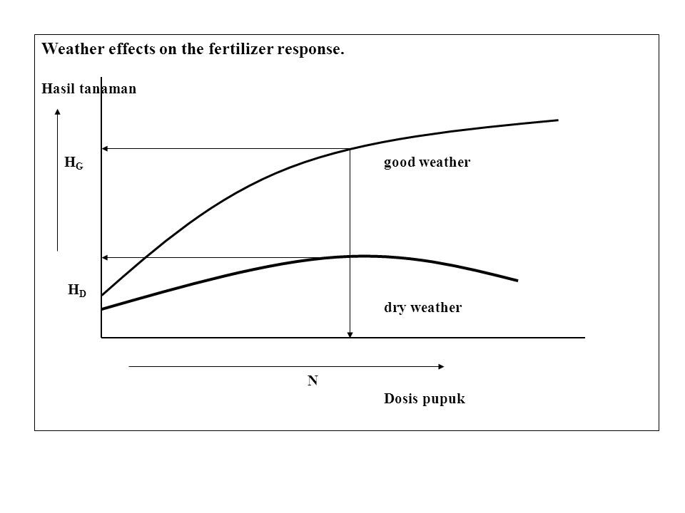 Weather effects on the fertilizer response. Hasil tanaman H G good weather H D dry weather N Dosis pupuk