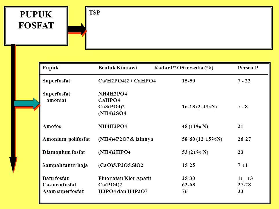 PUPUK FOSFAT TSP Pupuk Bentuk KimiawiKadar P2O5 tersedia (%)Persen P SuperfosfatCa(H2PO4)2 + CaHPO415-507 - 22 SuperfosfatNH4H2PO4 amoniatCaHPO4 Ca3(P
