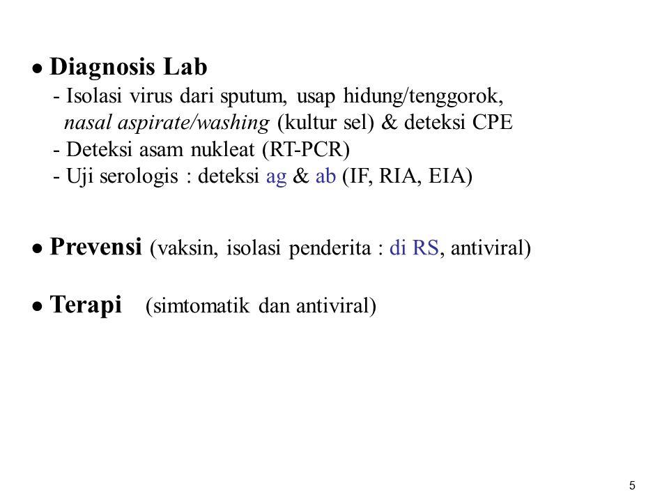 16 ● Diagnosis - Berdasar klinis - Laboratoris : - Spesimen : sekresi respiratorius, swab nasofaring/ conjunctiva,, PBMC, urin Isolasi virus (kultur) & deteksi CPE - Uji serologis : deteksi ag & ab (IF, CFT, EIA) - Deteksi asam nukleat (RT-PCR) ● Prevensi (vaksin MMR, IG, isolasi penderita di RS) ● Terapi (simtomatik, vitamin A, terapi komplikasi)