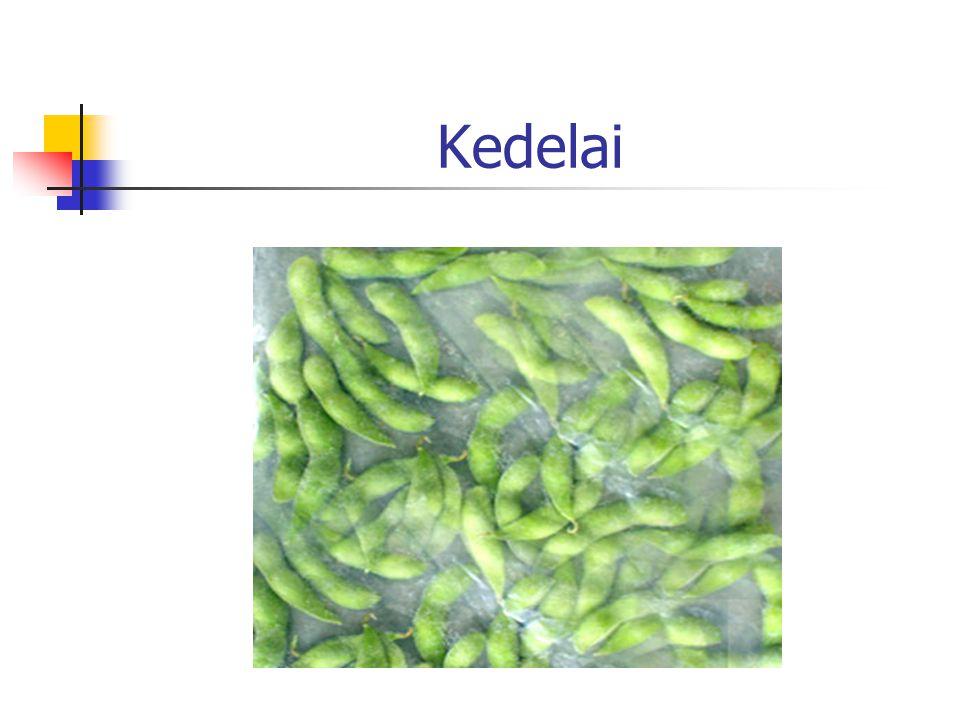 Salah satu jenis kacang-kacangan Sumber lemak,vitamin dan serat Sumber protein tinggi