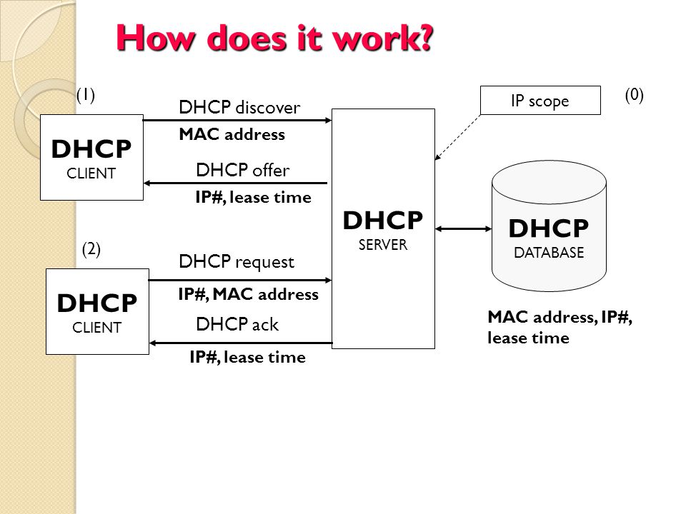 How does it work? DHCP CLIENT DHCP CLIENT DHCP SERVER DHCP DATABASE MAC address MAC address, IP#, lease time DHCP discover DHCP offer IP#, lease time
