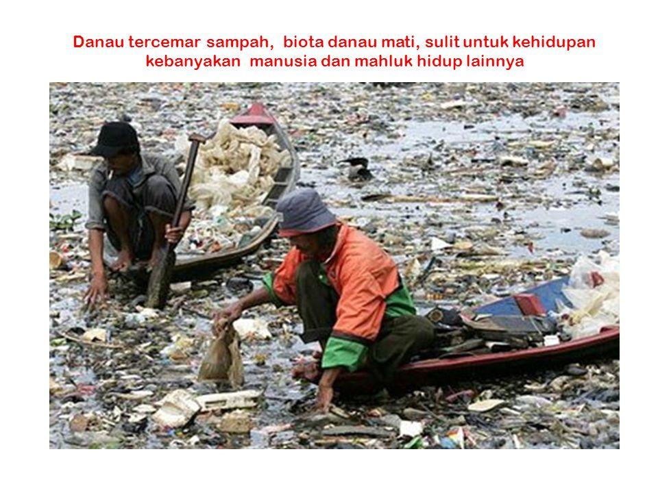 Danau tercemar sampah, biota danau mati, sulit untuk kehidupan kebanyakan manusia dan mahluk hidup lainnya