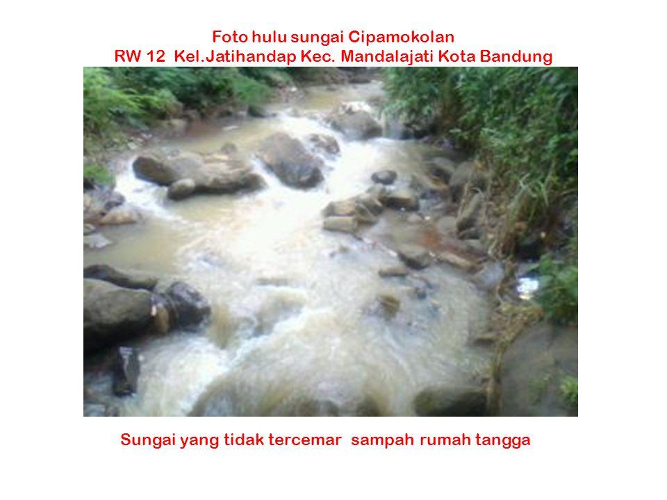 Foto hulu sungai Cipamokolan RW 12 Kel.Jatihandap Kec. Mandalajati Kota Bandung Sungai yang tidak tercemar sampah rumah tangga