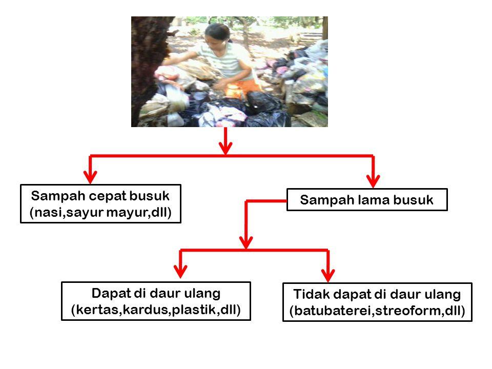 Sampah cepat busuk (nasi,sayur mayur,dll) Sampah lama busuk Dapat di daur ulang (kertas,kardus,plastik,dll) Tidak dapat di daur ulang (batubaterei,str