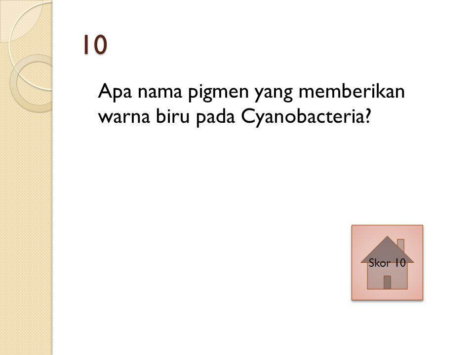10 Apa nama pigmen yang memberikan warna biru pada Cyanobacteria Skor 10