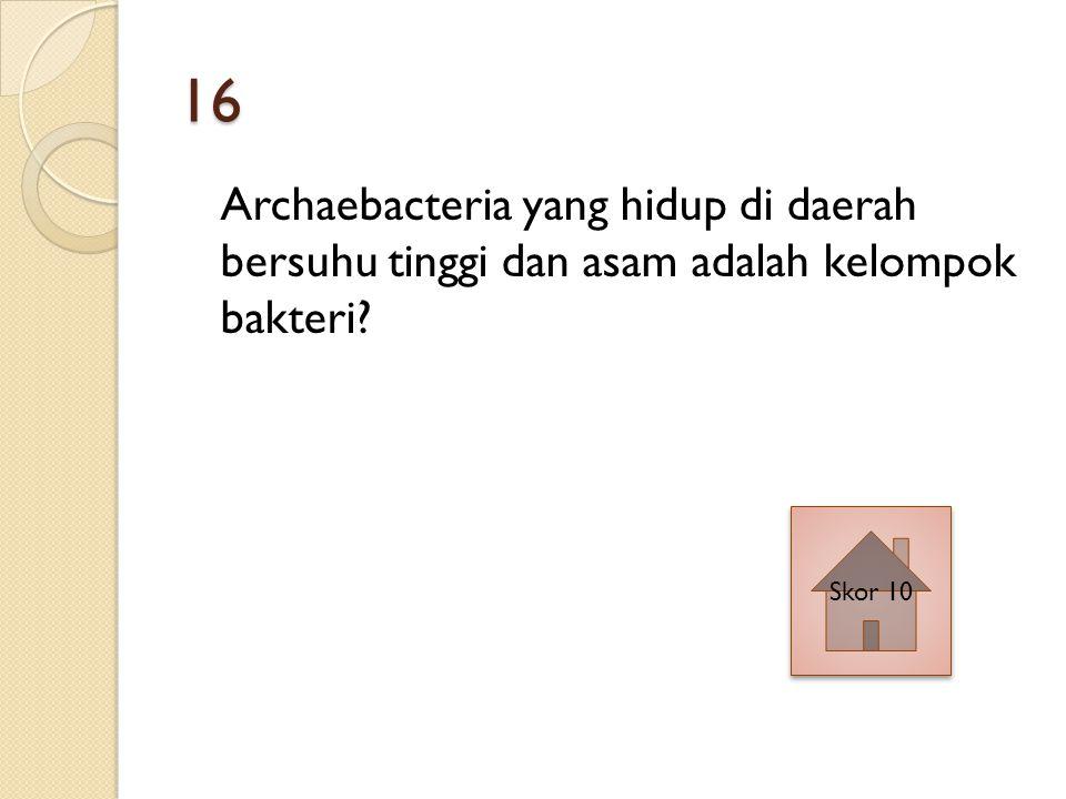 16 Archaebacteria yang hidup di daerah bersuhu tinggi dan asam adalah kelompok bakteri Skor 10