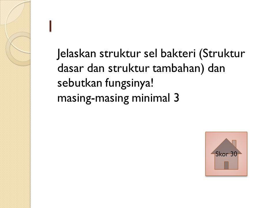 1 Jelaskan struktur sel bakteri (Struktur dasar dan struktur tambahan) dan sebutkan fungsinya.