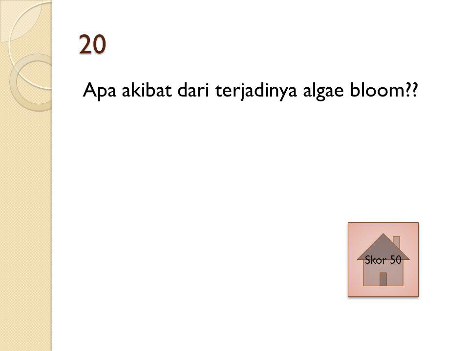 20 Apa akibat dari terjadinya algae bloom Skor 50