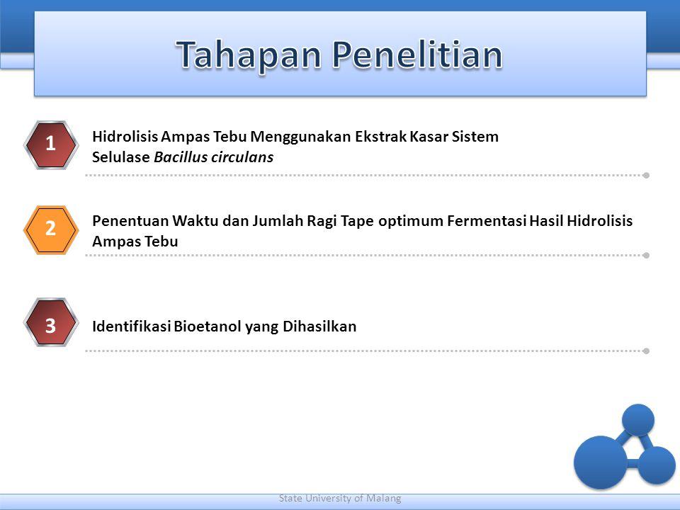 State University of Malang 1 Hidrolisis Ampas Tebu Menggunakan Ekstrak Kasar Sistem Selulase Bacillus circulans 2 3 Penentuan Waktu dan Jumlah Ragi Ta