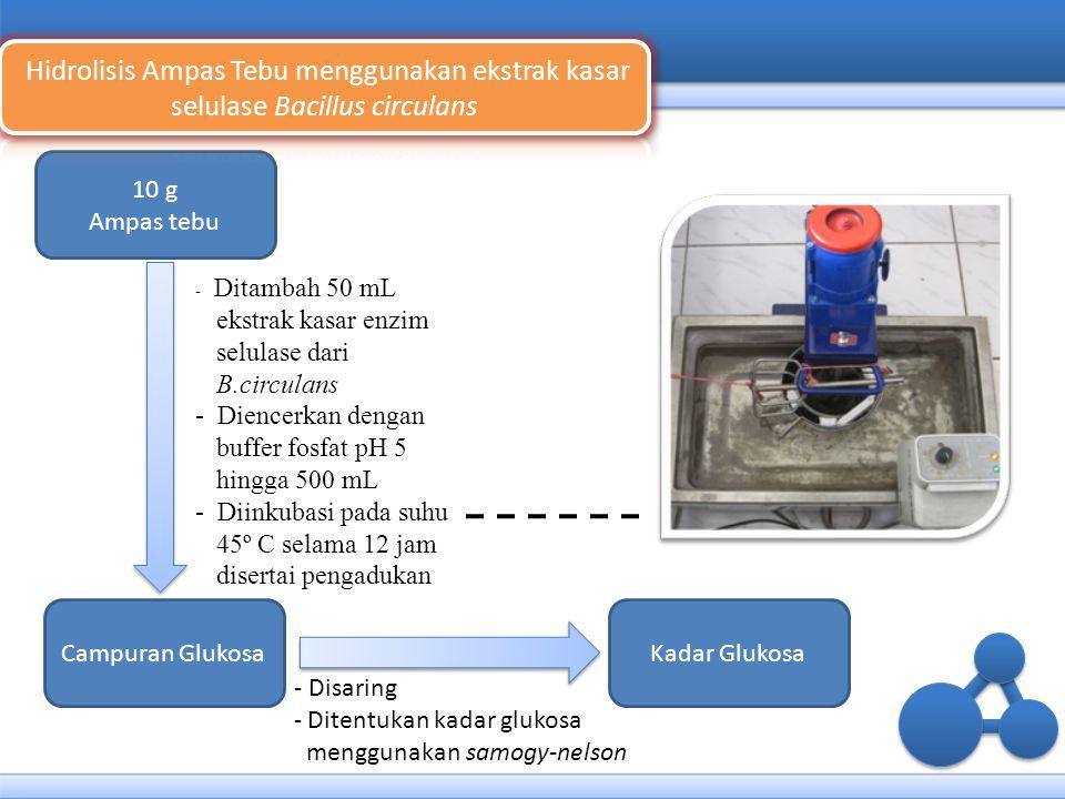 10 g Ampas tebu Campuran Glukosa - Ditambah 50 mL ekstrak kasar enzim selulase dari B.circulans - Diencerkan dengan buffer fosfat pH 5 hingga 500 mL -