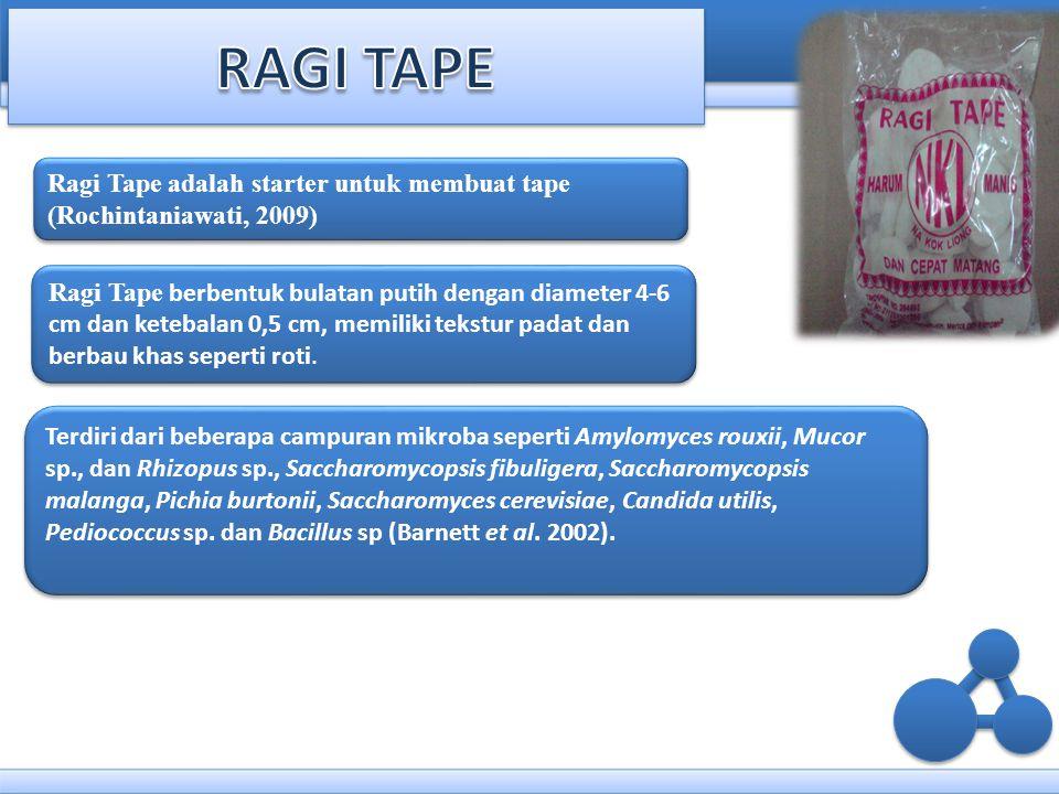 Ragi Tape adalah starter untuk membuat tape (Rochintaniawati, 2009) Ragi Tape berbentuk bulatan putih dengan diameter 4-6 cm dan ketebalan 0,5 cm, mem