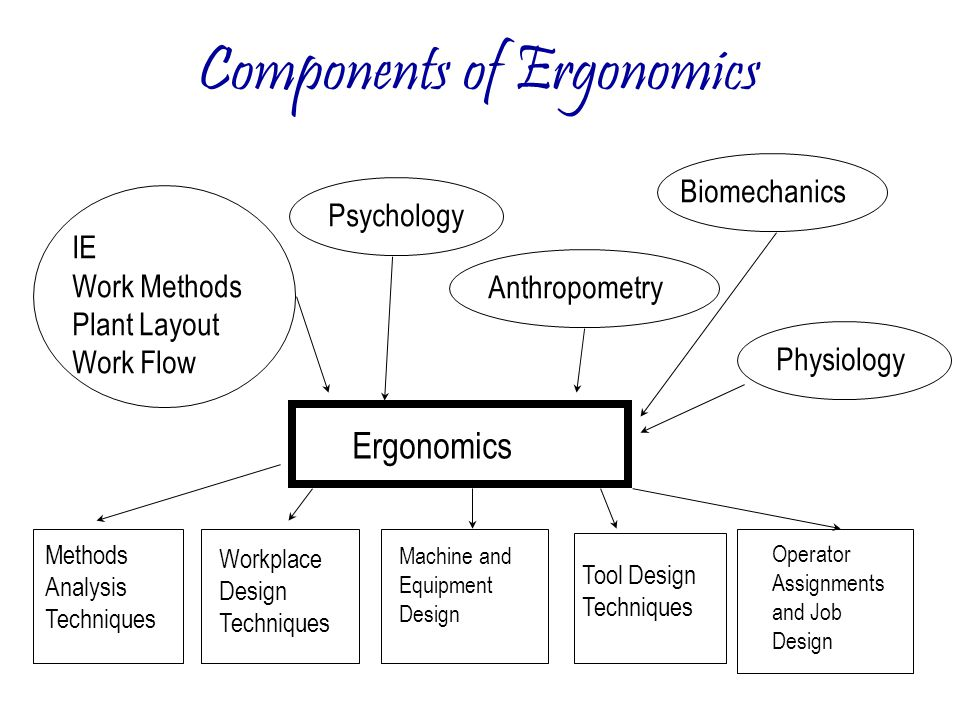 4. Components of Ergonomics