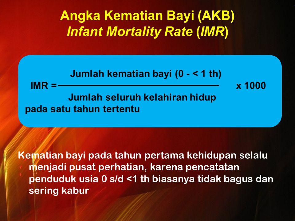 Angka Kematian Bayi (AKB) Infant Mortality Rate (IMR) Kematian bayi pada tahun pertama kehidupan selalu menjadi pusat perhatian, karena pencatatan penduduk usia 0 s/d <1 th biasanya tidak bagus dan sering kabur Jumlah kematian bayi (0 - < 1 th) IMR = x 1000 Jumlah seluruh kelahiran hidup pada satu tahun tertentu