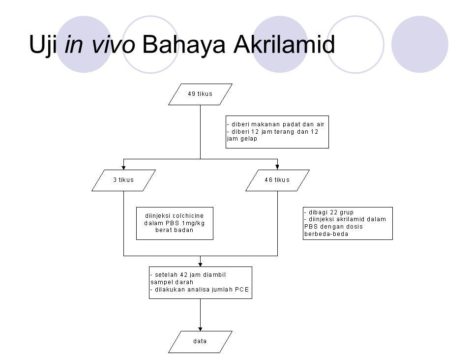 Uji in vivo Bahaya Akrilamid