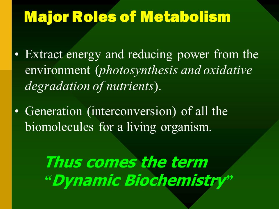 (Fuels) Exergonic Oxidation Complex Metabolites Endergonic Reduction Simpler Metabolites Biodegradation Biosynthesis Output of energy Input of energy