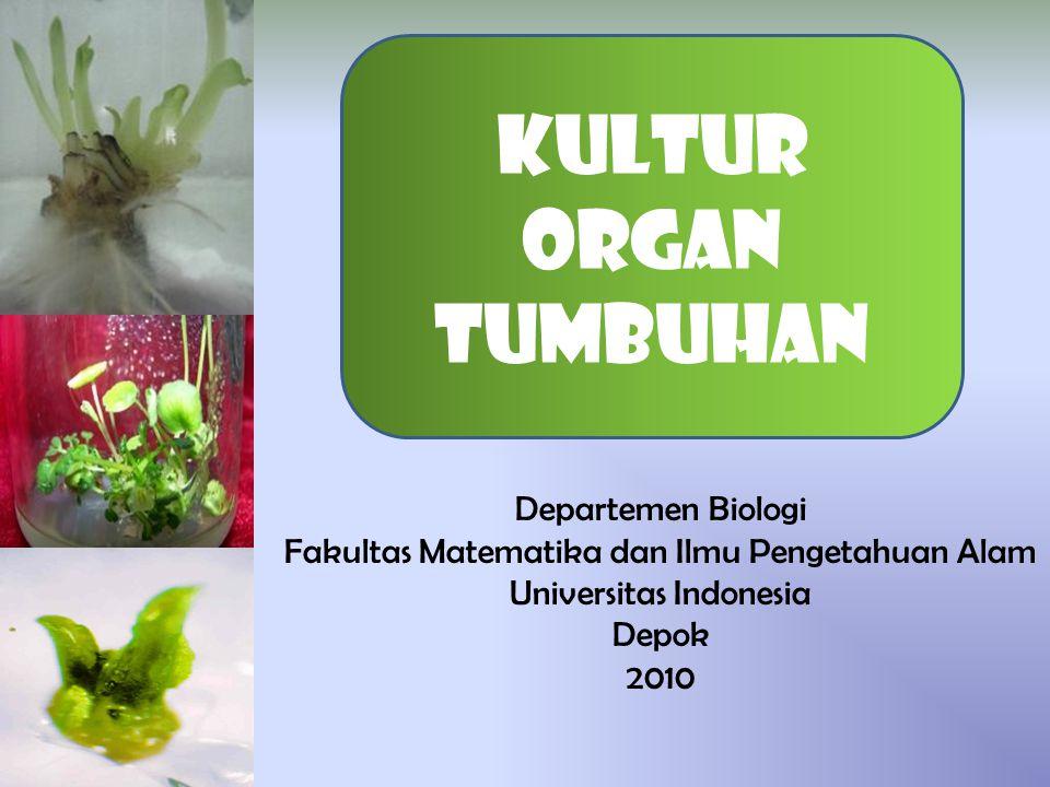 Departemen Biologi Fakultas Matematika dan Ilmu Pengetahuan Alam Universitas Indonesia Depok 2010 Kultur organ tumbuhan