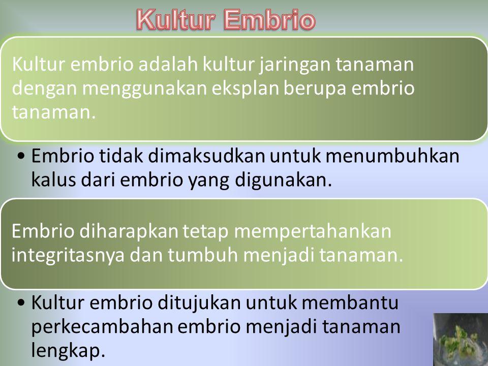 Kultur embrio adalah kultur jaringan tanaman dengan menggunakan eksplan berupa embrio tanaman. Embrio tidak dimaksudkan untuk menumbuhkan kalus dari e