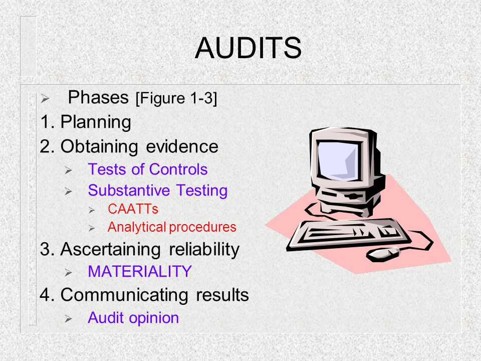 AUDITS  Phases [Figure 1-3] 1.Planning 2.